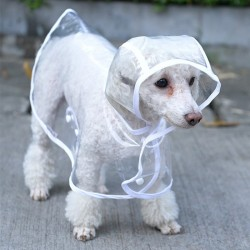Dog raincoat - transparent